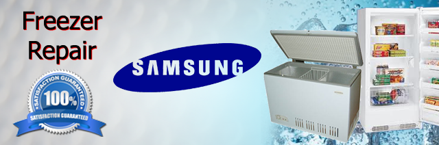 Samsung Freezer Repair